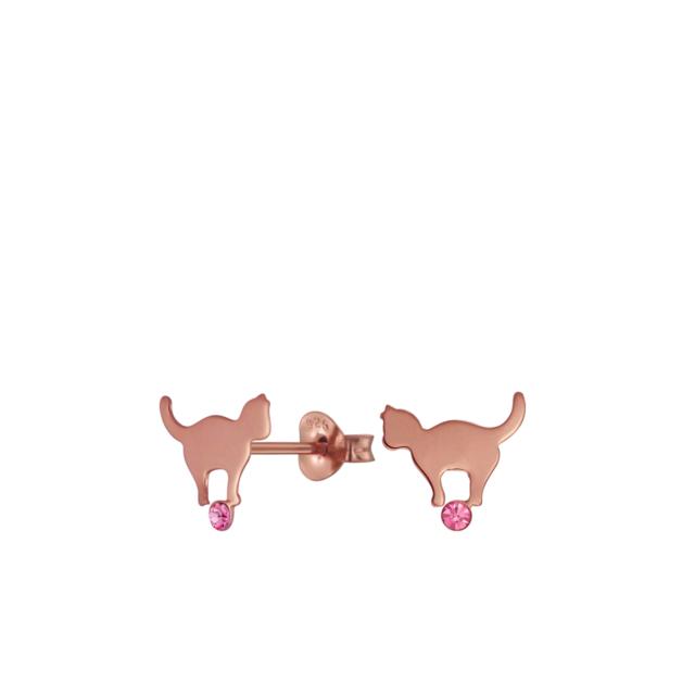Kassiga kõrvarõngad